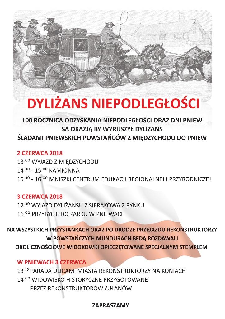 plakat_dylizans